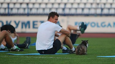Cat sitting next to athlete on soccer field.