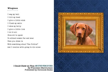 Dog with poem
