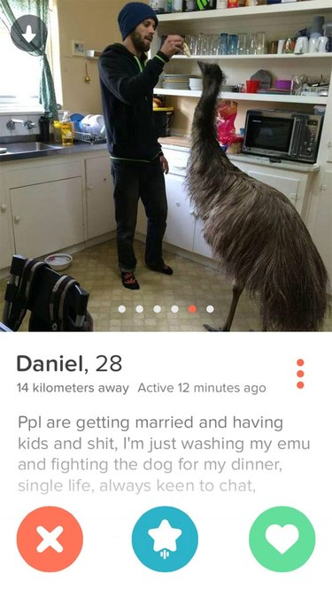 Tinder picture shows man feeding emu in kitchen