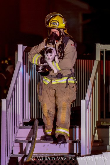 Cat alerts Canadian family to house fire