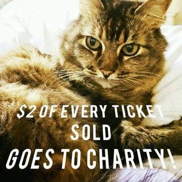$2 of every CatCon ticket sold goes to charity