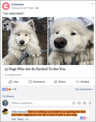 15 of the funniest comments ever posted to our — or any other — Facebook page