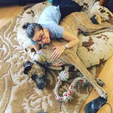 Great Dane cuddle