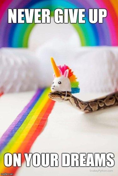 A snake wearing a unicorn hat