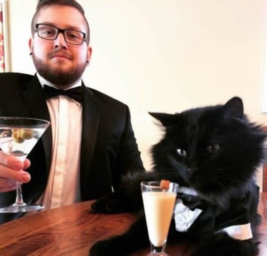 Cat and man in tuxes, drinking fancy drinks
