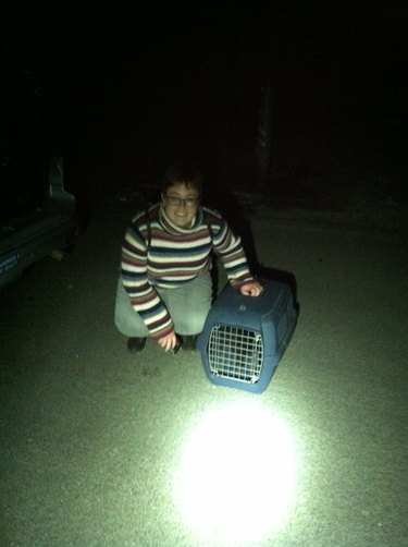 women with cat cage again
