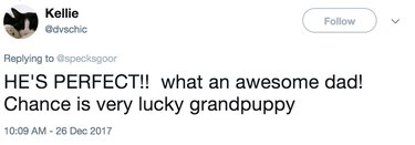 awesome dad and lucky puppy tweet