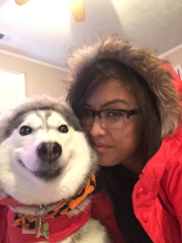 Woman and husky in matching parkas.