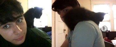 Kitten sitting on man's shoulder.