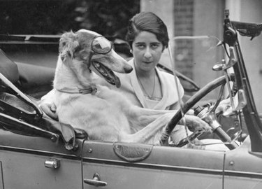 Lady in car with dog wearing driving goggles