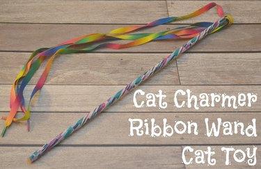 Ribbon Cat Teaser