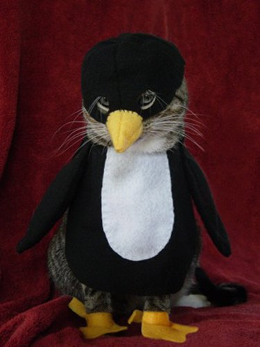 Cat dressed as a penguin.