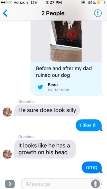 """Proud Dad Gives """"Awesome"""" Haircut To Family Dog"""