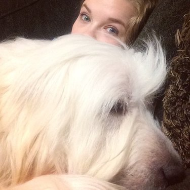 Big white dog sleeping in front of woman.