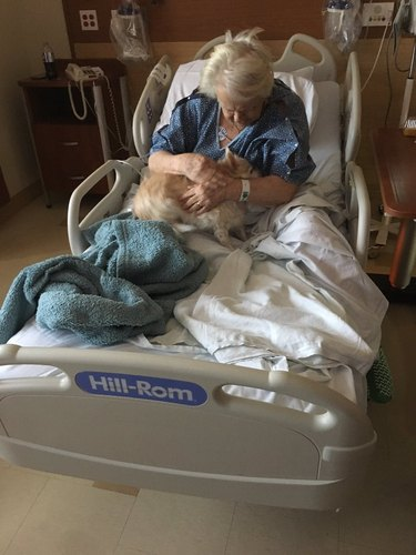 This Woman Dressed Her Grandma's Dog as a Baby to Sneak It Into the Hospital