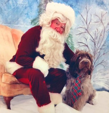 Dog leaning away from Santa