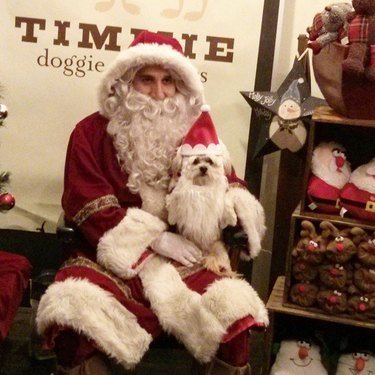 Small dog in Santa hat sitting on Santa's lap.