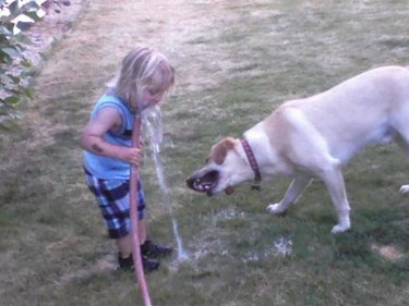 Dog and kid playing with garden hose.