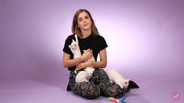 Emma Watson literally can't deal with cute kittens during interview