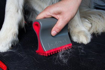 Cuteness Picks: 7 Essential Cleaning Products For Pet Parents