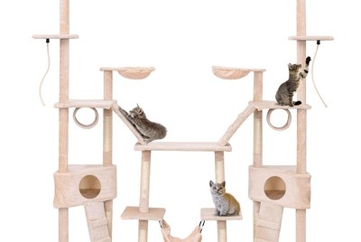 5 Amazing Cat Trees For Every Cat's Climbing Needs