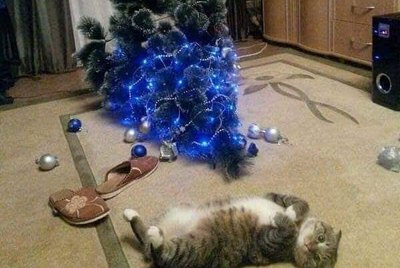 18 More Cats Vs Christmas Trees For Your Holiday Horror
