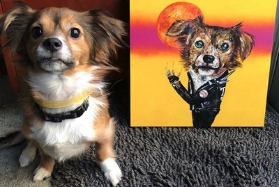 15 Dogs and Their Majestic Portraits