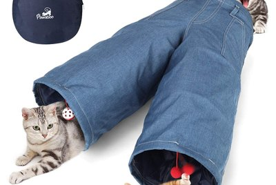 Cuteness Picks: 7 Pet Products You Had No Idea Were Even A Thing