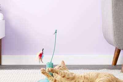 Cuteness Picks: 7 Interactive Toys That Will Keep Your Cats Occupied While You Work From Home