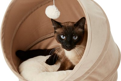 Cuteness Picks: 7 Cat Caves For Priority Sleepers