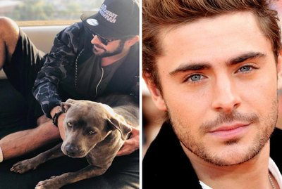 Hunky Zac Efron Saves Puppy From Grisly Fate At The Last Second