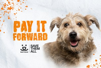 Help Save Pets' Lives with Best Friends' Pay It Forward Campaign