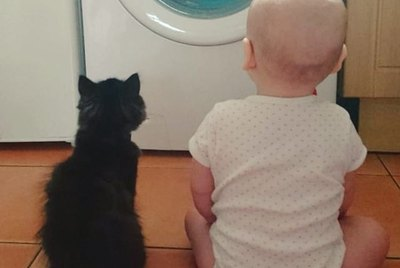 17 Kitties and the Kids Who Love Them