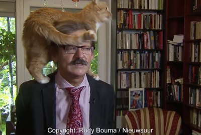Academic's Cat Does The Most Hilarious Thing During His Television Interview