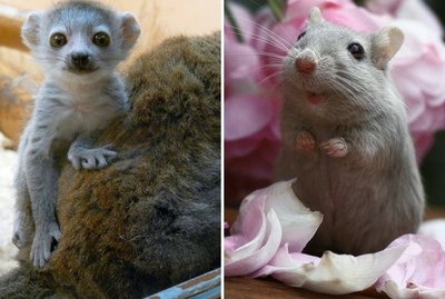 18 of the Cutest Little Babies That Will Make You Say 'Awww'