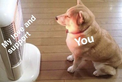 20 Dog Memes That Are Deeply Relatable