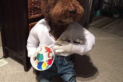 18 Animals in Costumes You'll Want to Steal