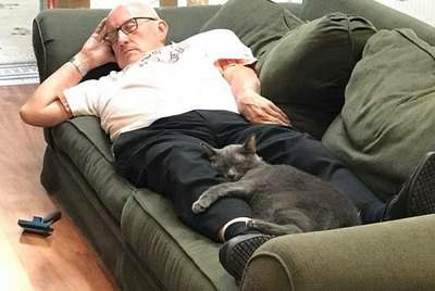 Retiree Cuddles With Special Needs Cats At No-Kill Shelter