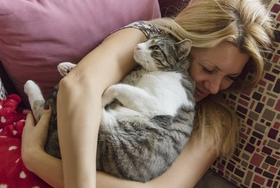 15 Tips That Could Lengthen Your Cat's Life