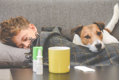 Does My Dog Know When I'm Sick?