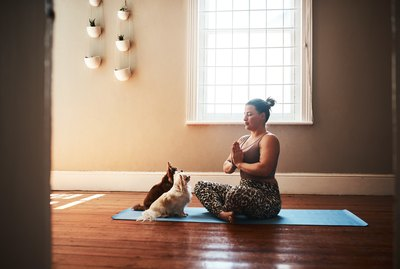 Why Do My Pets Love My Yoga Mat So Much?