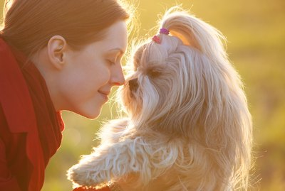 Do You Like to Smell Your Pet? Here's Why