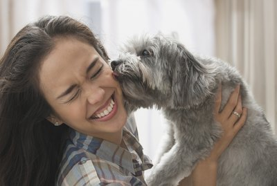 The Most Romantic Things To Do With Your Dog This Valentine's Day