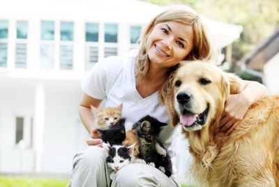 The Beginner's Guide to Fostering Cats or Dogs