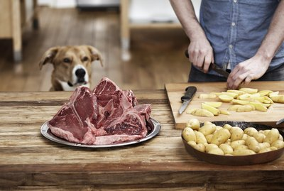 How to Cook Steak for Your Dog