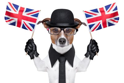 200 Charming British Dog Names