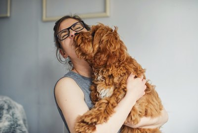 How Do Dogs Choose Whom To Snuggle With?