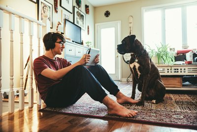 Is Technology Affecting Our Dogs in Ways We Don't Realize?