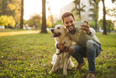 Can Dogs See Phone Screens?