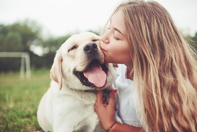 Why is Petting a Dog Therapeutic?